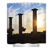 Temple Of Apollo Hylates Shower Curtain