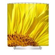 #923 D718 You Are My Sunshine. Sunflower On Colby Farm Shower Curtain