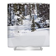 A Backcountry Skier A Turn Near Ymir Shower Curtain
