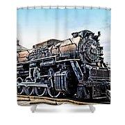 A Baltimore Chooch Shower Curtain