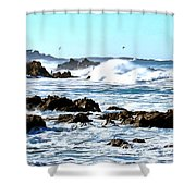 Seascape And Sea Gulls Shower Curtain