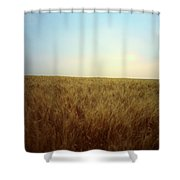A Barley Crop Sways In The Wind Shower Curtain