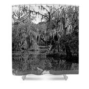 A Bayou Scene In Louisiana Shower Curtain