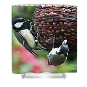 A Beautiful Pair Of Tits Shower Curtain
