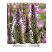 A Bee's Work Is Never Done Abwndp Shower Curtain