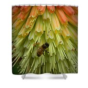 A Bee's Work Is Never Done Shower Curtain