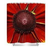 A Big Orange And Yellow Flower Shower Curtain