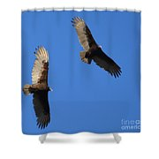 A Bird By Any Other Name.... Shower Curtain