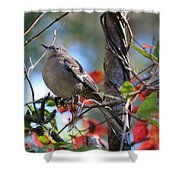 A Bird Enjoying The View Shower Curtain