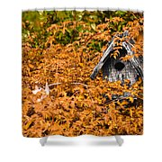 A Bird House Sits Empty In Fall Shower Curtain