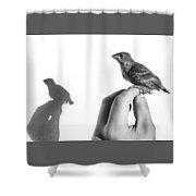 A Bird On The Hand Shower Curtain