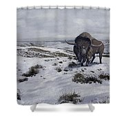 A Bison Latifrons In A Winter Landscape Shower Curtain