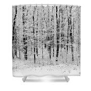 Virgin Snow Shower Curtain