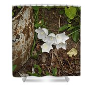 A Bloom In Time Shower Curtain