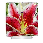 A Blooming Flower Shower Curtain by Raven Regan