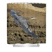 A Blue Heron Flying Shower Curtain