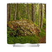 A Boulder In The Rainforest Shower Curtain