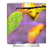 A Branch With Leaves Shower Curtain