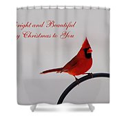 A Bright And Beautiful Merry Christmas To You Shower Curtain