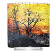 A Brilliant Observer Of Life Shower Curtain by Brett Pfister