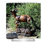A Buck And His Doe Shower Curtain