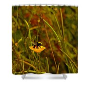 A Bumble In A Cup Shower Curtain