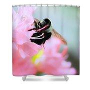Bumble Bee And Azalea Shower Curtain