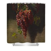 A Bunch Of Grapes Shower Curtain by Andrew John Henry Way