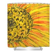 A Burst Of Yellow Shower Curtain