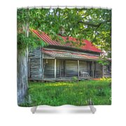 A Cabin In The Woods Shower Curtain