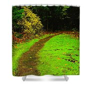 A Carpted Path Shower Curtain