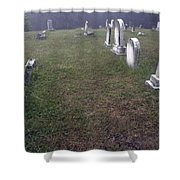 A Cemetery In New Salem Shower Curtain