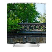 A Central Park Bridge Shower Curtain