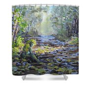 A Chance Encounter With Mossman Shower Curtain