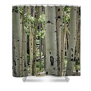 A Change Of Weather  Shower Curtain