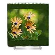A Cheerful Symphony Shower Curtain