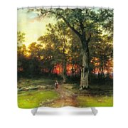 A Child Walks In A Forest Shower Curtain