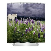 A Childs Dream Among Lupine Shower Curtain