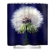 A Childs First Wish Shower Curtain