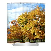A Chromatic Fall Day Shower Curtain