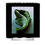 A Collard Leaf Shower Curtain