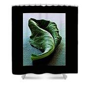 A Collard Leaf Shower Curtain by Romulo Yanes