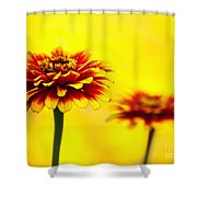 A Colorful Pair Shower Curtain