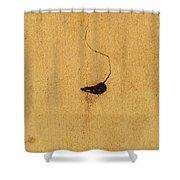 A Concrete Life Shower Curtain
