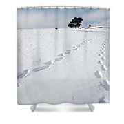 A Couple Walking In The Snow Shower Curtain