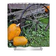 A Crop Of Pumpkins Shower Curtain