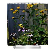 A Cute Couple Of Yellow Finches Shower Curtain