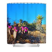 A Dangerous Yet Beautiful Land Shower Curtain