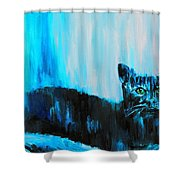 A Dark Ambiguous Presence Questioned All Shower Curtain