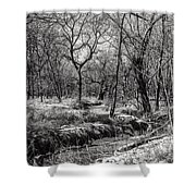 A Dash Of Snow Shower Curtain